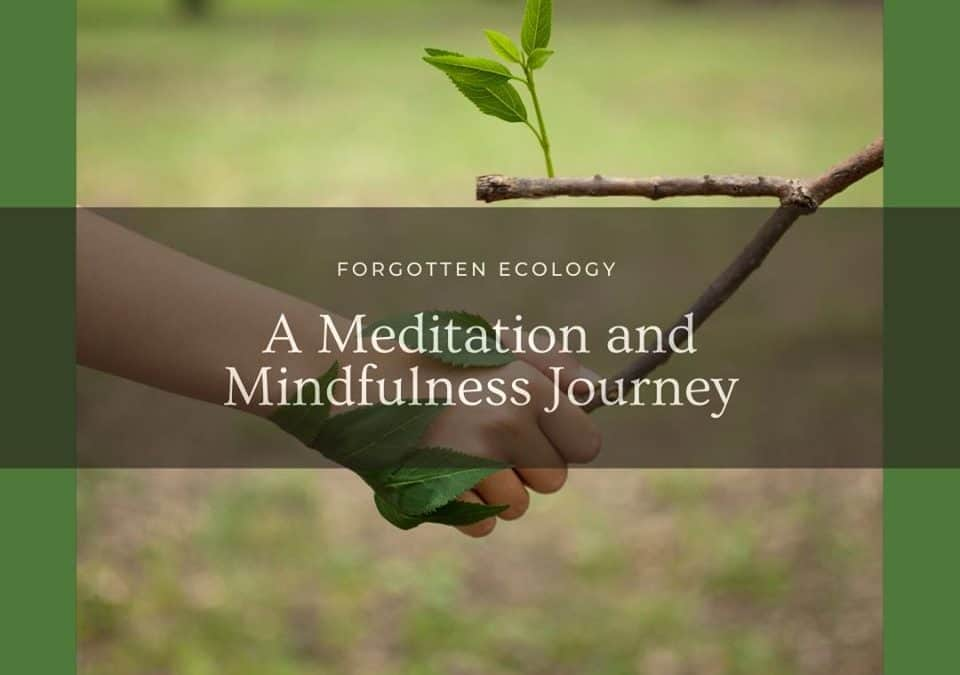 Forgotten Ecology – A Meditation and Mindfulness Journey (8 week course)
